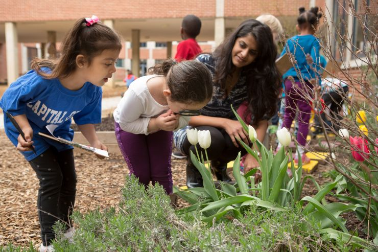 PreK looking at the garden. Photo courtesy of Allison Shelley/The Verbatim Agency for American Education: Images of Teachers and Students in Action